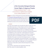 Human Rights of IPs