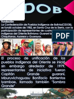 (CIDOB) La Confederación de Pueblos Indígenas de Bolivia