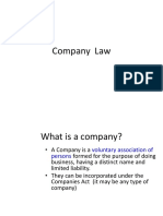 company law ppt.ppt