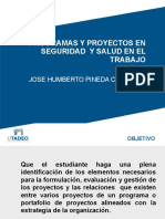 PROGRAMAS Y  PROYECTOS EN SEGURIDAD Y SALUD EN EL TRABAJO 2017(A) (1).pptx