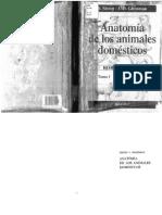 Anatomia de los animales domesticos Getty Tomo I.pdf