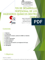 CAMPOS DE DESARROLLO PROFESIONAL DE LOS INGENIEROS QUÍMICOS EN UNA CEMENTERA