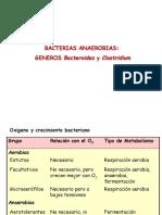 BACILOS GRAM (+) ANAEROBIOS