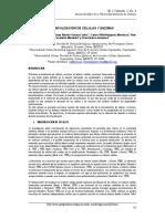 Inmovilizacion 2.pdf