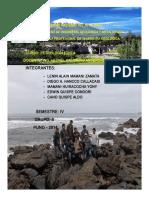 Informe_de_petrologia_ignea.docx