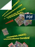 Actualización 1 Circulación y Metabloismo Cerebral