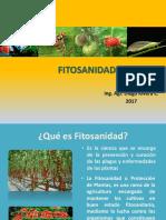 FITOSANIDAD.pptx