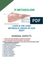 Liver Metabolism