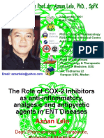 20050823-bali-The Role of COX-2 Inhibitors as anti-inflammatory.ppt