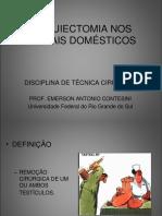 Aula de orquiectomia nos animais domesticos NOVA.pdf