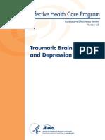 Traumatic brain injury depression CER25_TBI_Depression_Report_04_13_2011.pdf