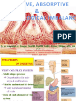 0.Digestive, Absorptive & Microbiological Imbalance