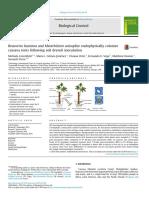 Beauveria bassiana and Metarhizium anisopliae endophytycally.pdf
