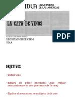 4-LA_CATA_DE_VINOS