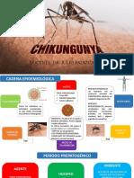 Historia Natural Chikungunya
