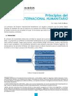 Principios Del Derecho Internacional Humanitario. Observatoria de DIH