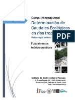 Fundamentos Curso Ce Ibp Uva Peru Oct14