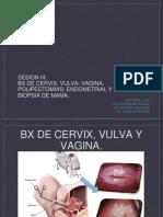 SESION III BX DE CERVIX.pptx