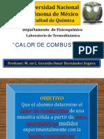 CALOR_DE_COMBUSTION_30763.pdf