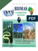 Aula6_Biomas.pdf