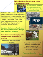 Movement and distribution of semi-feral cattle in southern forests