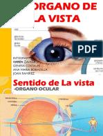 sentidodelavistayenfermedadesdelavista-130703095417-phpapp02