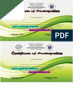 Essay Writing Certificate
