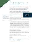 US_2010-10_Whitepaper_BI_Project_Management_101.pdf