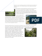 Conservation in Malaysia Essay