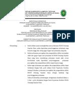 02. SK Pedoman Pelayanan PPI.doc