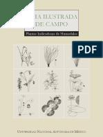 Guia Ilustrada de Plantas