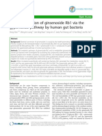 Biotransformation of ginsenoside Rb1 via the gypenoside pathway by human gut bacteria