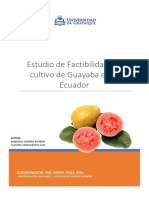 Factibilidad del Cultivo de Guayaba en el Ecuador