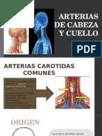 ARTERIAS DE CABEZA Y CUELLO.pptx
