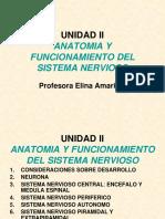 Psicofisiologia Unidad II