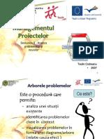 Arborele problemelor_nevoilor.pdf