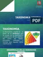 TAXONOMÍA-VEGETAL.pptx