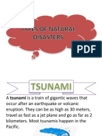 Presentation1 Types of Natural Disasters