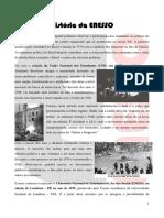 História da ENESSO