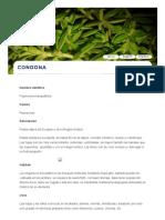 Plantas Medicinales de Ancash