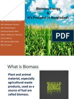 Prospect of Biomass in Bangladesh
