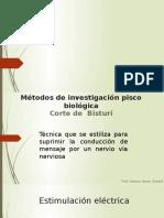 DIAPO SJB - copia - copia.pptx