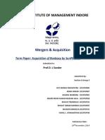 M&A Term Paper Final.docx
