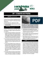 CIP1 El Concreto en la Practica.pdf