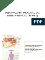 Embriologia SN