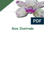 Guia_Ilustrado_Orquideas.pdf