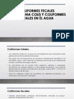 COLIFORMES FECALES (ESCHERICHIA COLI) Y COLIFORMES TOTALES - copia.pptx