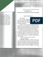 Apnéia e Ronco-Tratamento Miofuncional Orofacial 3.PDF