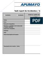 Formato Flash Report