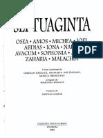 Septuaginta 5 Profetii Mici - Introduceri-07